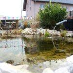unser Teich zum entspannten warten / small lake for relaxed waiting of customers /